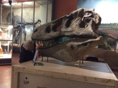 Dino visit Doreen