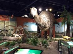 Dino Visit